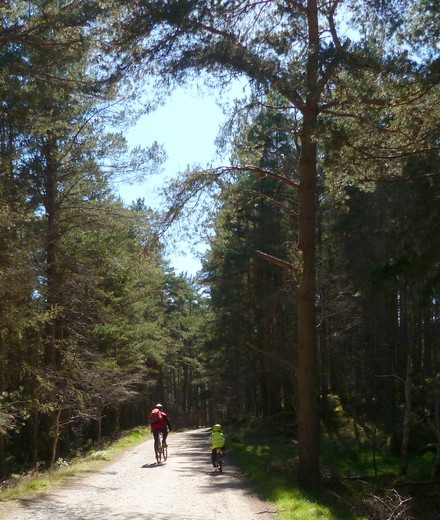 Conditions des sorties VTT